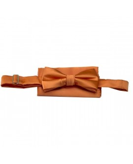 Noeud Papillon Orange + pochette